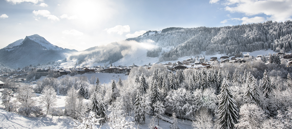 Alpine VTC